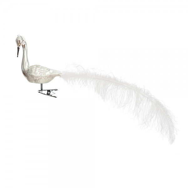 großer Halsvogel, gedrehter Kopf, Krone