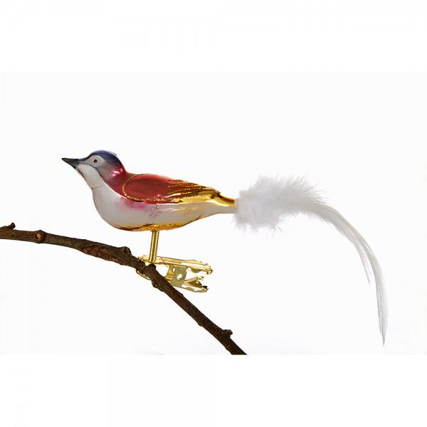 kleiner Vogel mit gedrehten Kopf, gespritzt, Feder