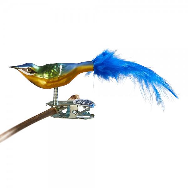 Mini-Blaumeise, Naturfeder