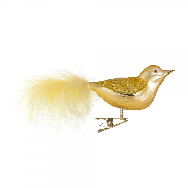 Vogel, Flügel goldener Glimmer
