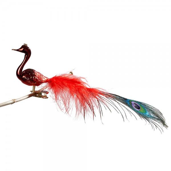 kleiner Halsvogel, mittlere + Pfauenfeder