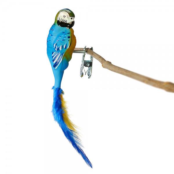 Papagei, Gelbbrustara, Naturfedern
