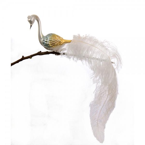 großer Halsvogel, gedrehter Kopf, Krone, lange weiße Feder