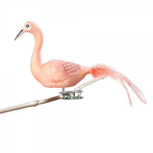 großer Flamingo, Naturfedern