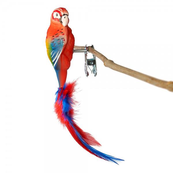 Papagei, roter Ara, Naturfedern