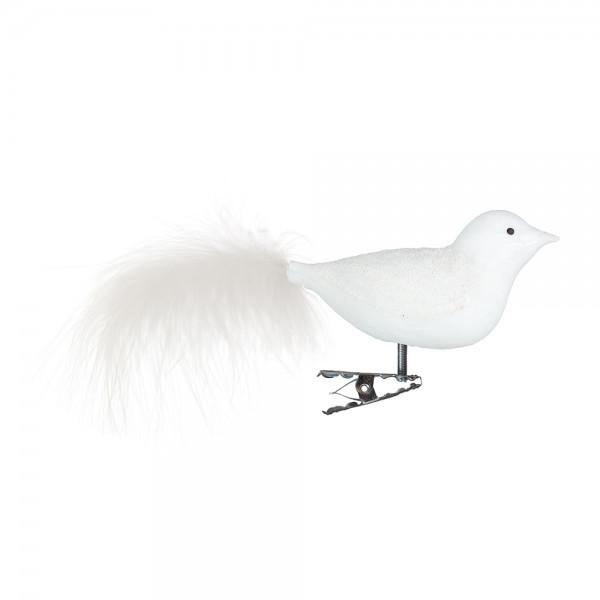 Vogel, Flügel Glassand