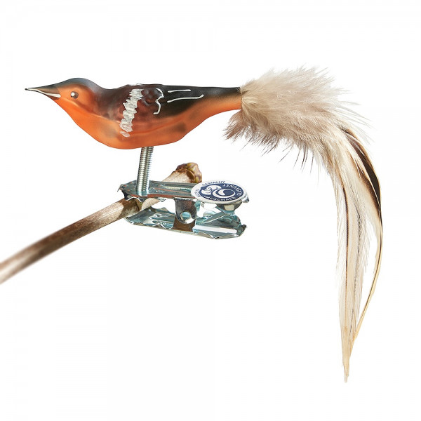 Mini-Buchfink, Naturfeder
