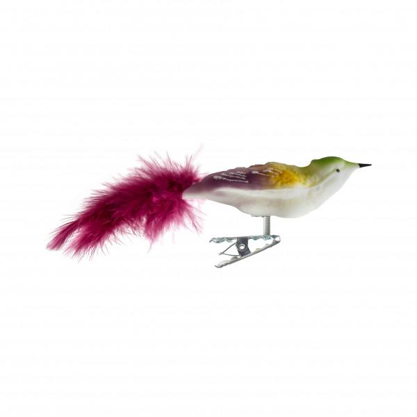 Vogel mit breiter Schulter, Federn
