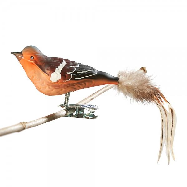 Buchfink, Naturfeder