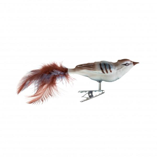 kleiner Vogel, Federn
